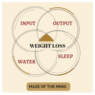 4-laws-of-weight-loss